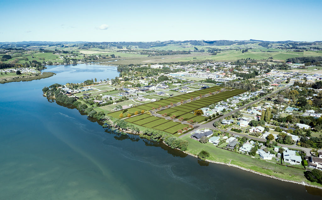 real estate mangawhai